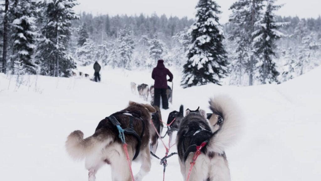 5 höjdare att se i Finland - Rovaniemi